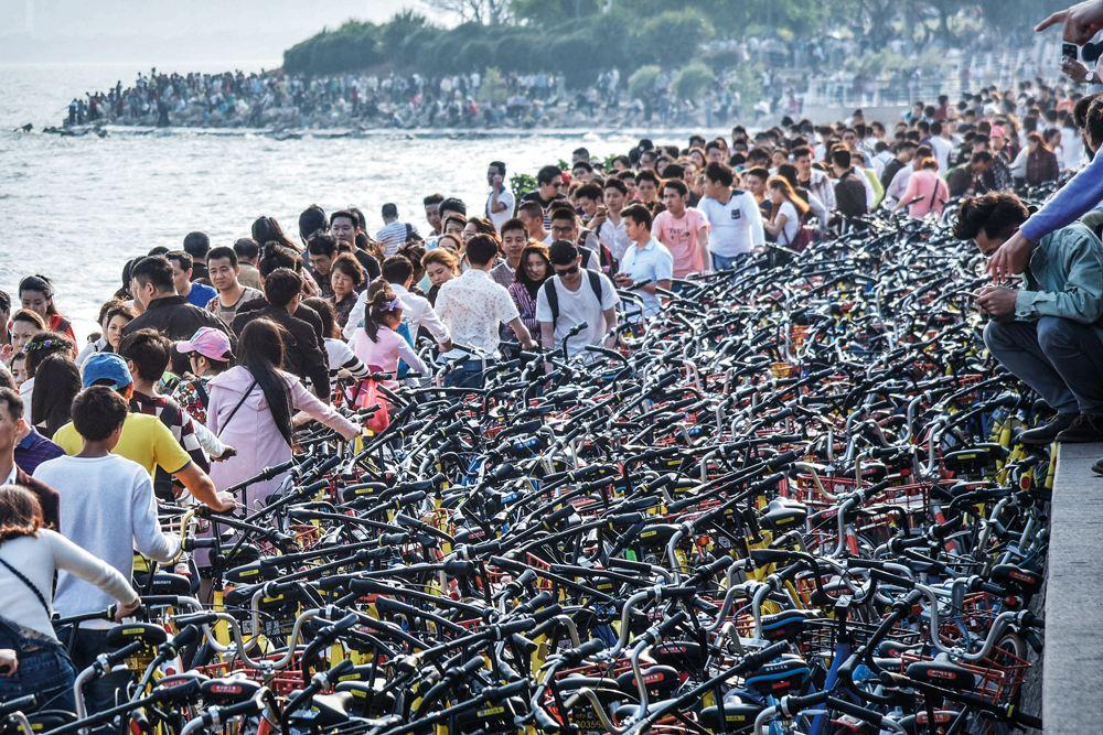 重磅!即日起,深圳要求暂停新增投放共享单车!